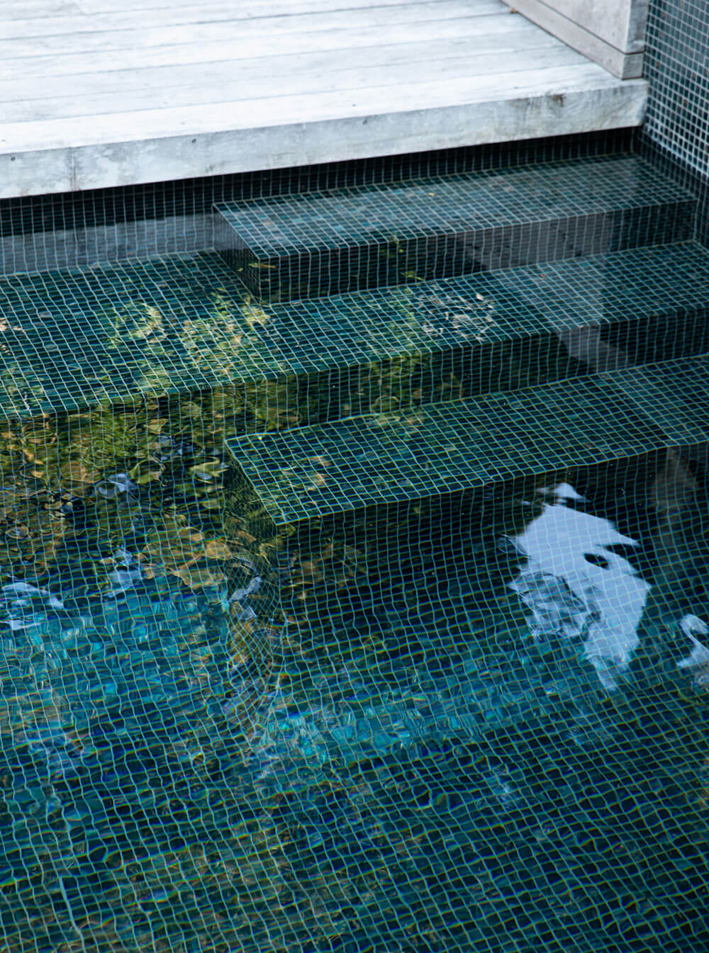 Hamish Cameron Architecture - swimming pool